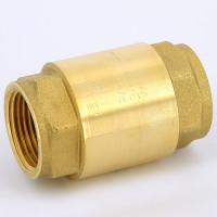 Обратный клапан Itap Europa 100 1' с металлическим затвором, пружинный